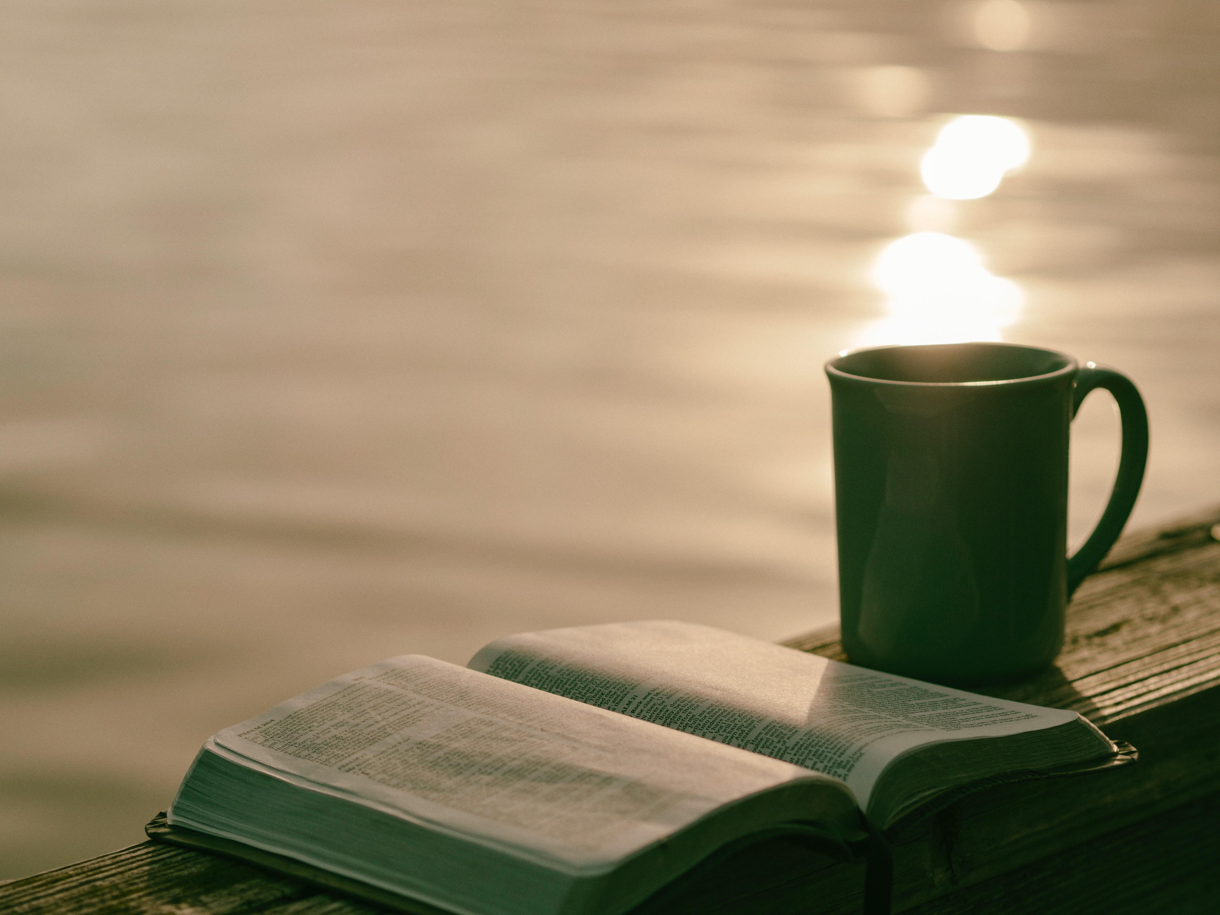 7 redes sociales para amantes de la lectura